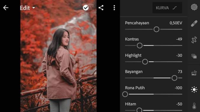 Mengatur Kecerahan Lightroom Pro Mod Apk